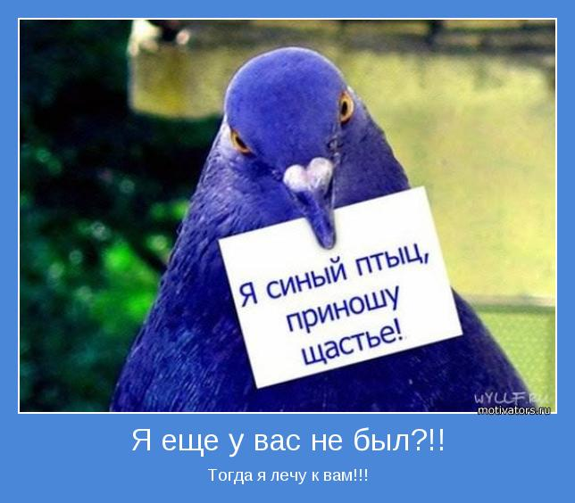 http://www.motivators.ru/sites/default/files/imagecache/main-motivator/motivator-19097.jpg