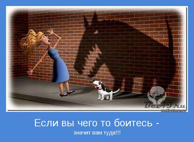 http://www.motivators.ru/sites/default/files/imagecache/main-motivator/motivator-30268.jpg